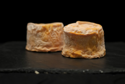 "Fromage langres ""place aux fromages"" fromager langon gironde"