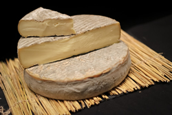 "fromage saint nectaire ""place aux fromages"" fromager langon gironde"